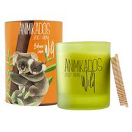 Ambientair Свеча ароматическая Wild Koala Бальзамические листья 40 ч - арт.VV040BLAW, фото 1