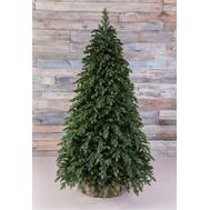 Triumph Tree Искусственная елка Царская 230см зеленая - арт.73675, фото 1