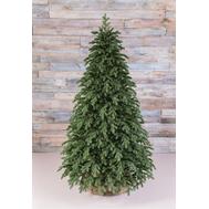 Triumph Tree Искусственная елка Царская 100% литая 155см зеленая - арт.72089, фото 1