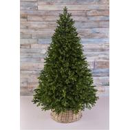 Triumph Tree Триумф Можжевельник 215см зеленая - арт.72046, фото 1