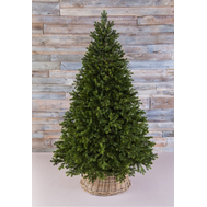 Triumph Tree Триумф Можжевельник 260см зеленая - арт.72048, фото 1