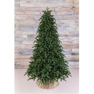Triumph Tree Триумф Ель Нормандия Пушистая 260см темно-зеленая - арт.72053, фото 1