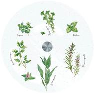 Easy Life (R2S) Блюдо стеклянное (вращающееся) Herbarium 32см, стекло - арт.EL-R0441_HERU, фото 1