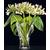 Ваза цветочная Nachtmann Calypso - 24см, фото 3